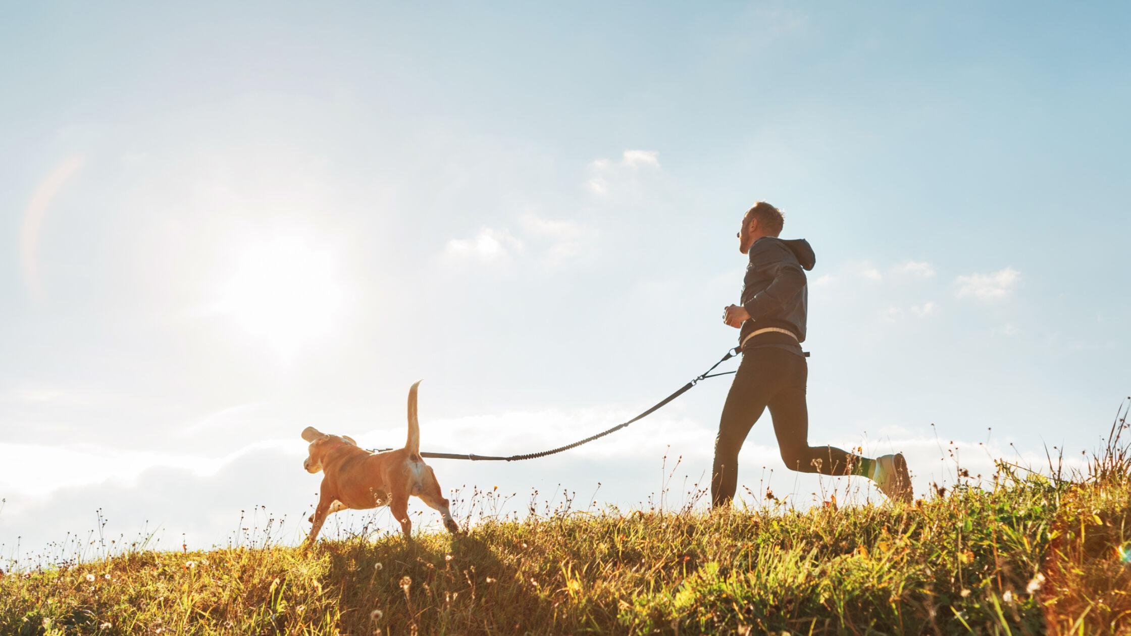 7 tips voor hardlopen met je hond