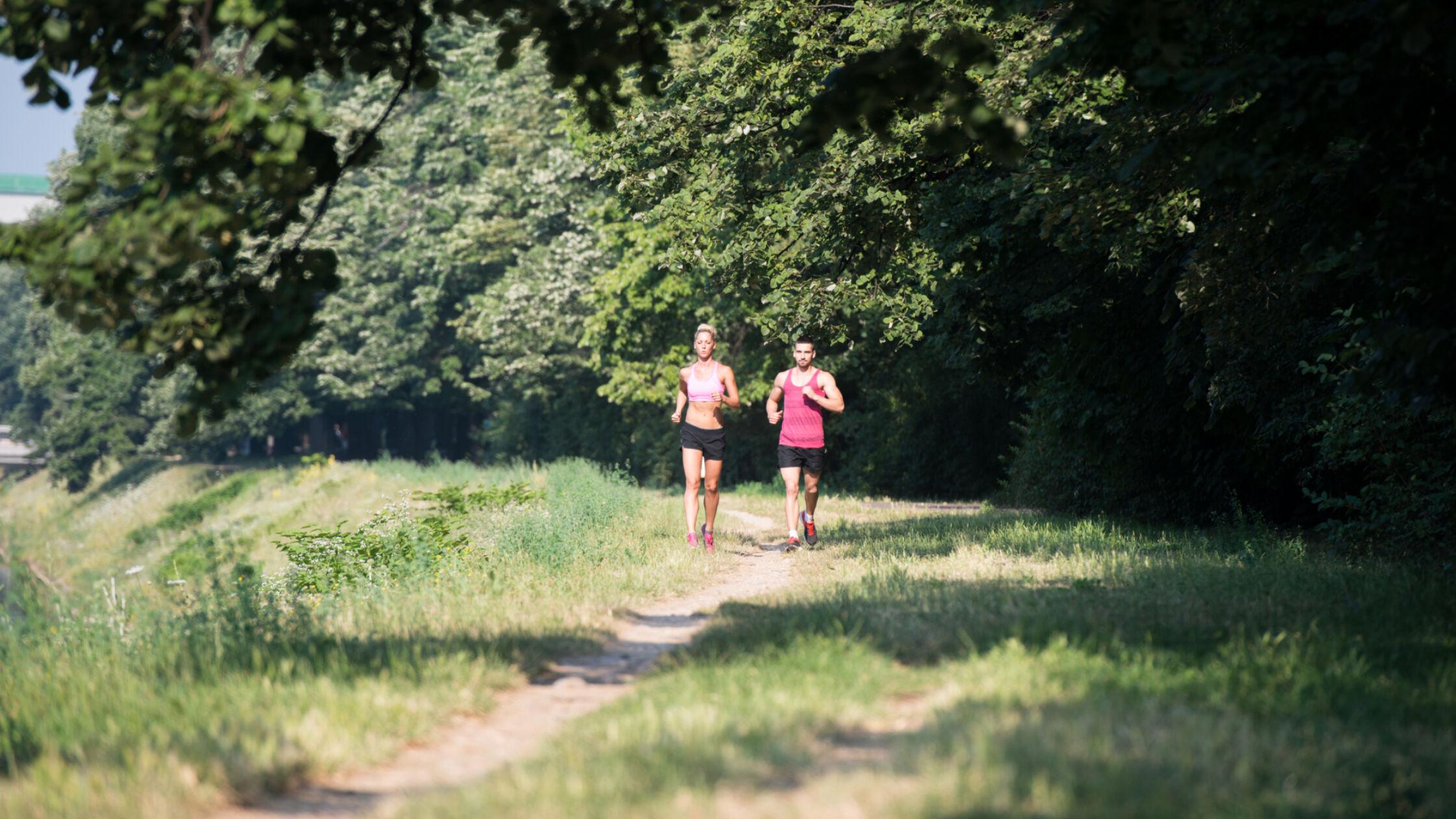 Kom vier dagen hardlopen op de groene Veluwe