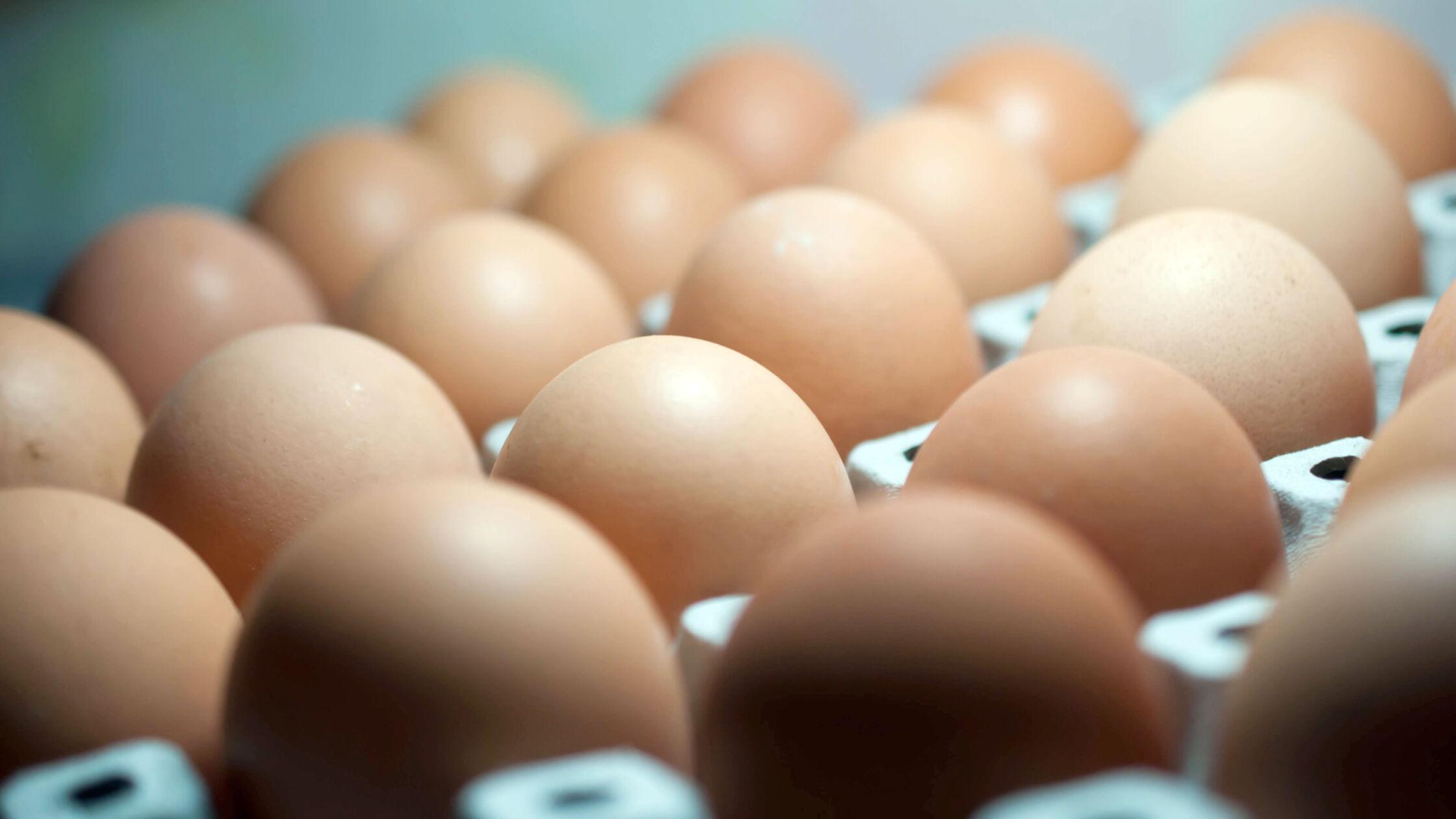 Hoe gezond zijn eieren eigenlijk?