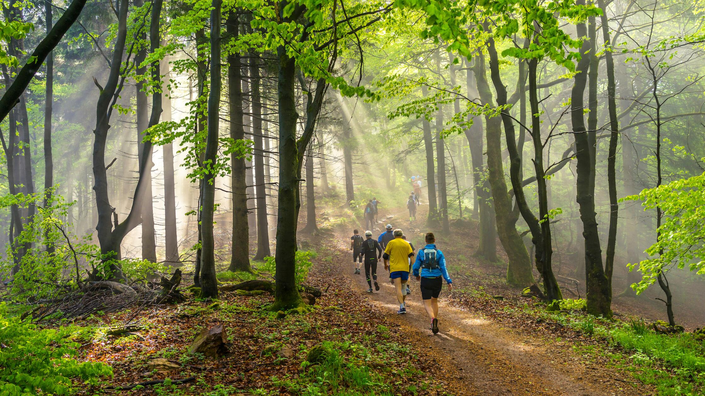 Ultramarathons: gekkenwerk of droomdoel?