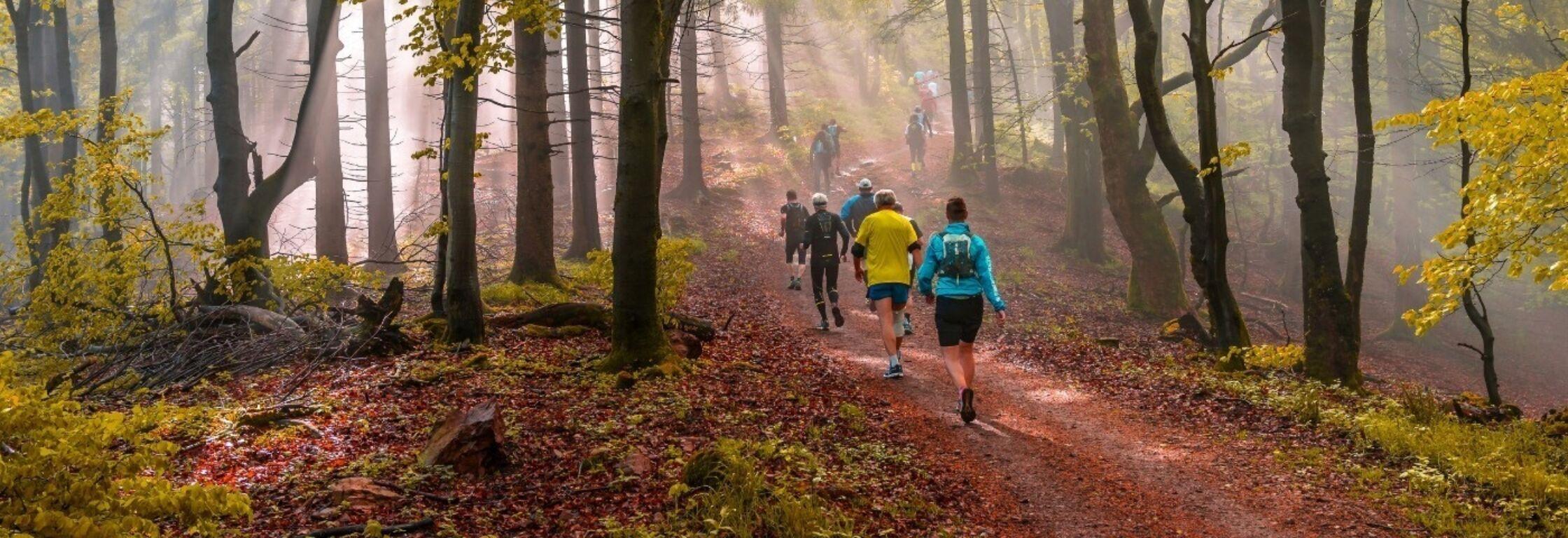 Hoe begin je met trailrunning?