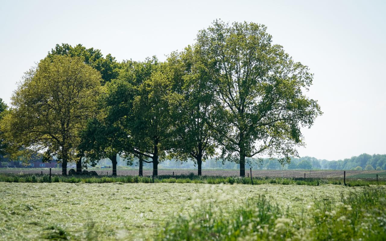 Verken de schatkamer van de geschiedenis in het Drentsche Aa