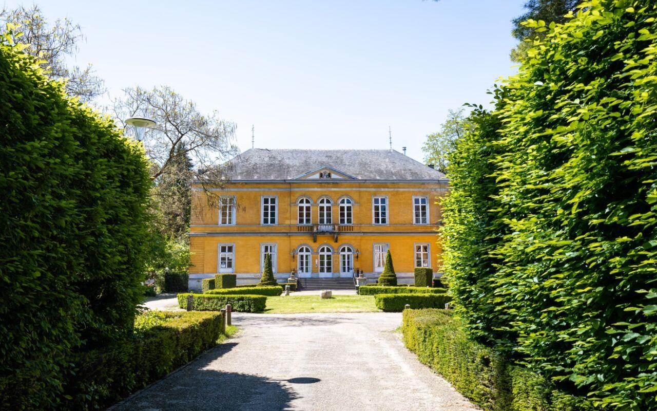 Ren langs kastelen in het Geuldal